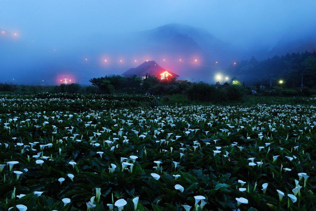 field house mountains lights fog night wallpaper