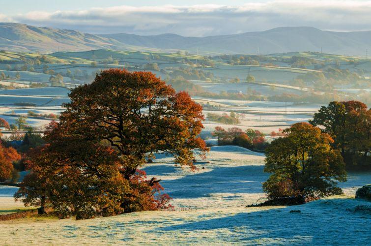 hills autumn frost trees fields wallpaper