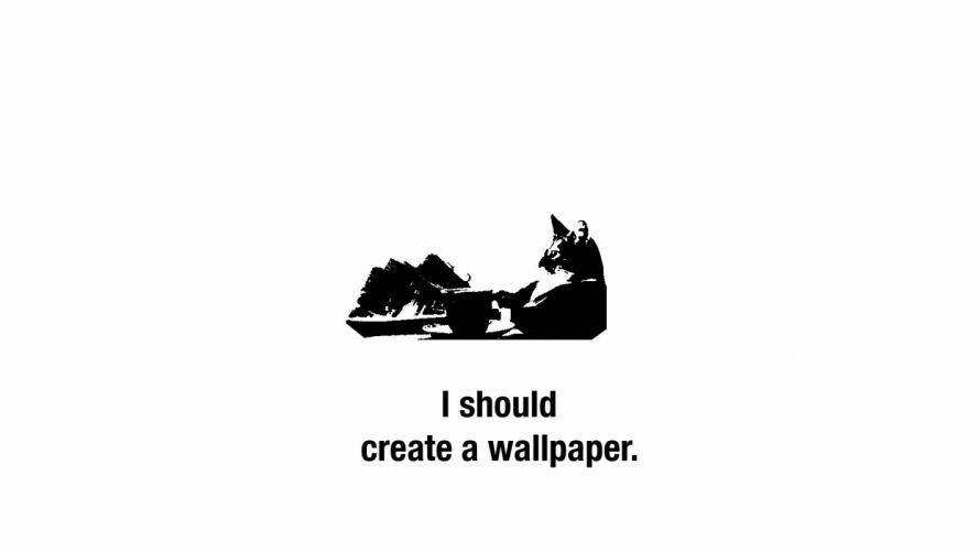 cat meme quote funny humor grumpy (86) wallpaper