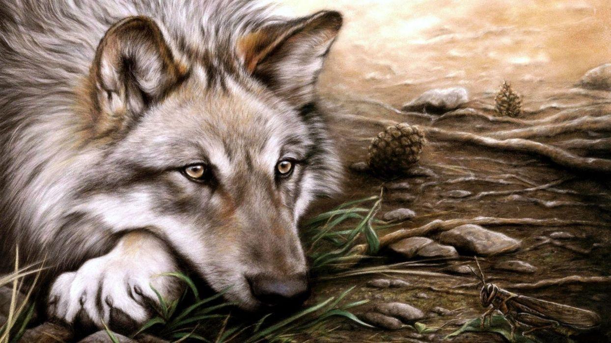 art wolf wallpaper