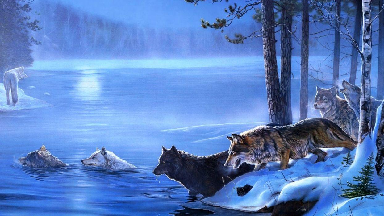 art wolf winter   g wallpaper