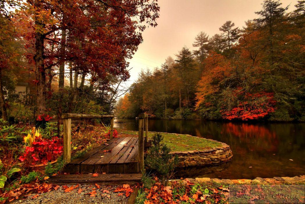 forest river autumn bridge wallpaper