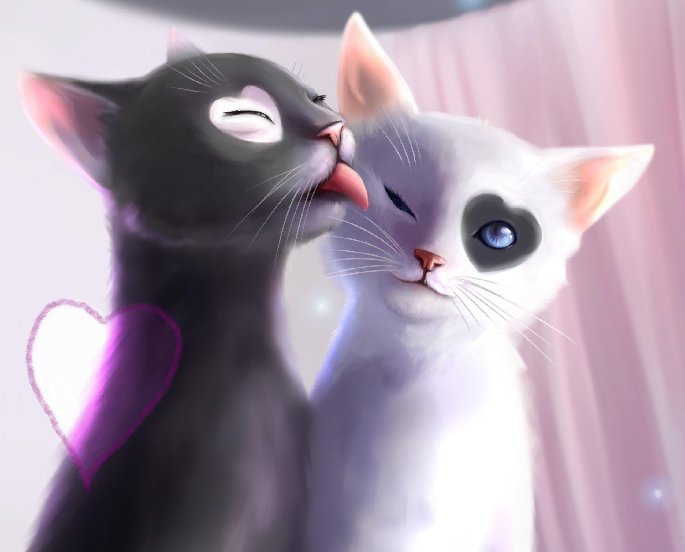 Love Wallpaper For chat : Language art cats love heart mood d wallpaper 2239x1803 356285 WallpaperUP
