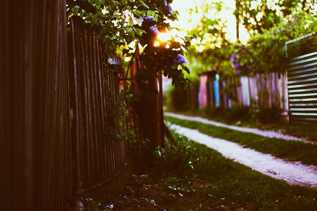sunset fence house grass leaves spring sun bokeh lilac wallpaper