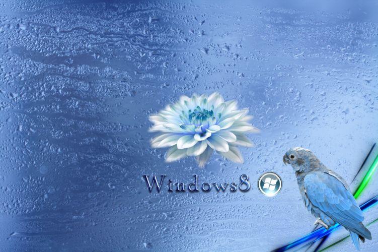 windows computer h wallpaper