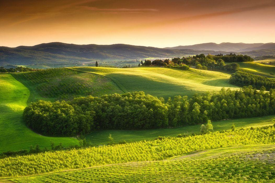 Italy Scenery Fields Tuscany Nature wallpaper