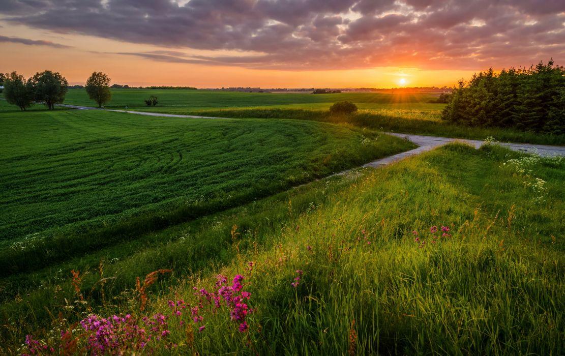 Scenery Sunrises and sunsets Fields Grass Nature wallpaper