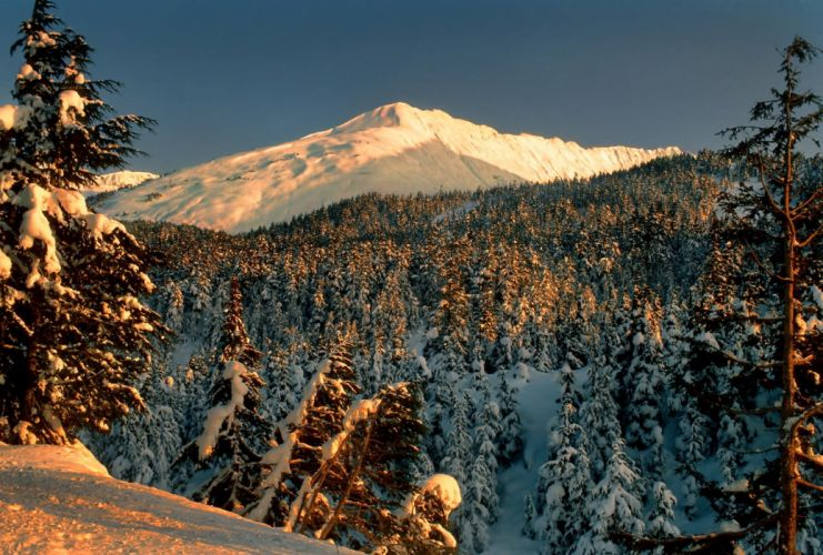 snow forest mountains trees landscape park winter wallpaper
