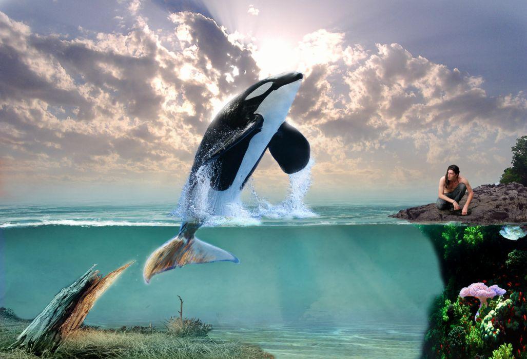 dolphin 3d art orca whale ocean fantasy creative wallpaper