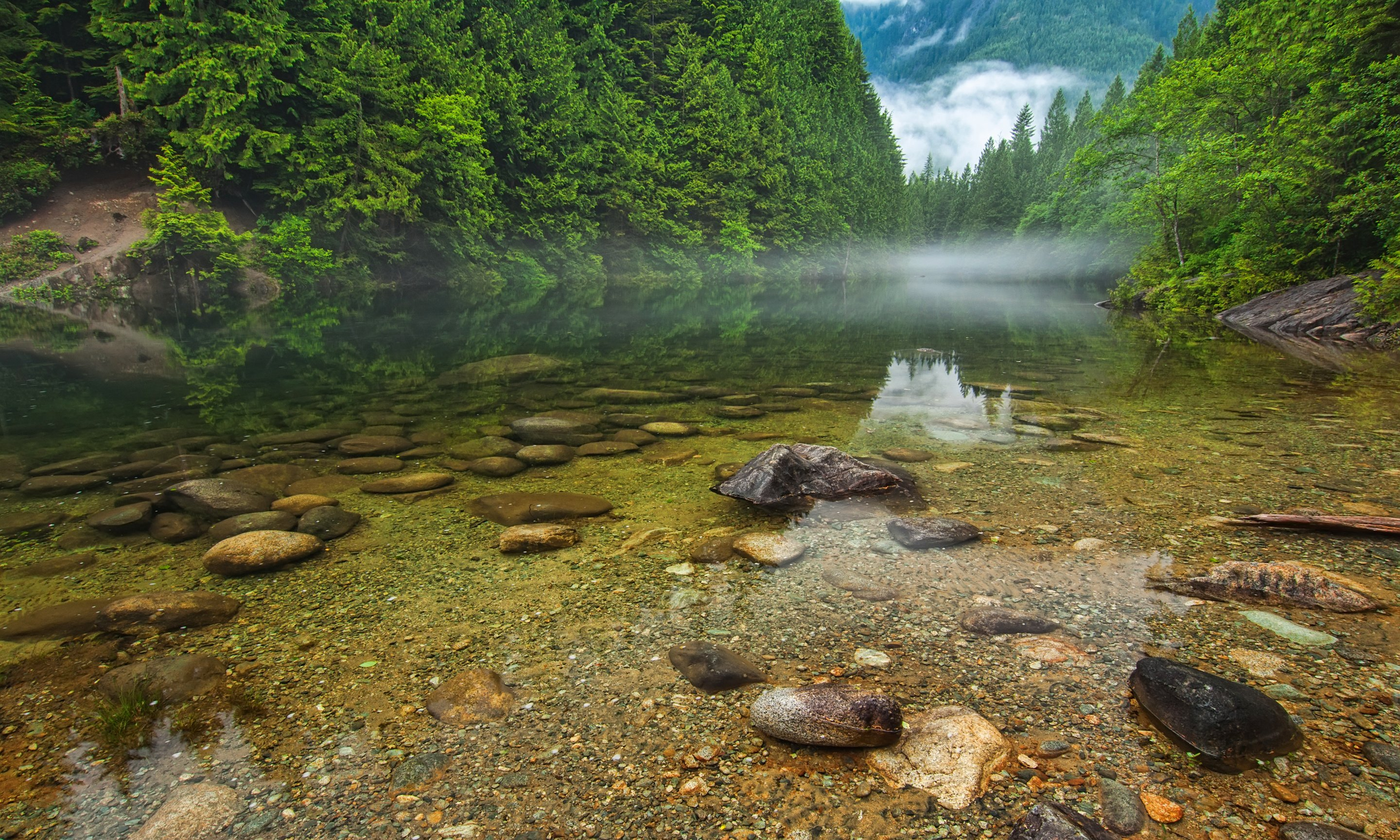 Forest Mountains Canada British Columbia Wallpaper