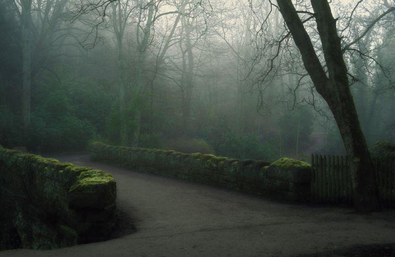park fog bridge morning forest wallpaper