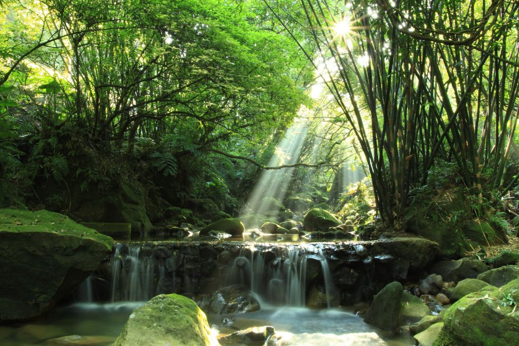 river waterfall stones_ moss forest wallpaper