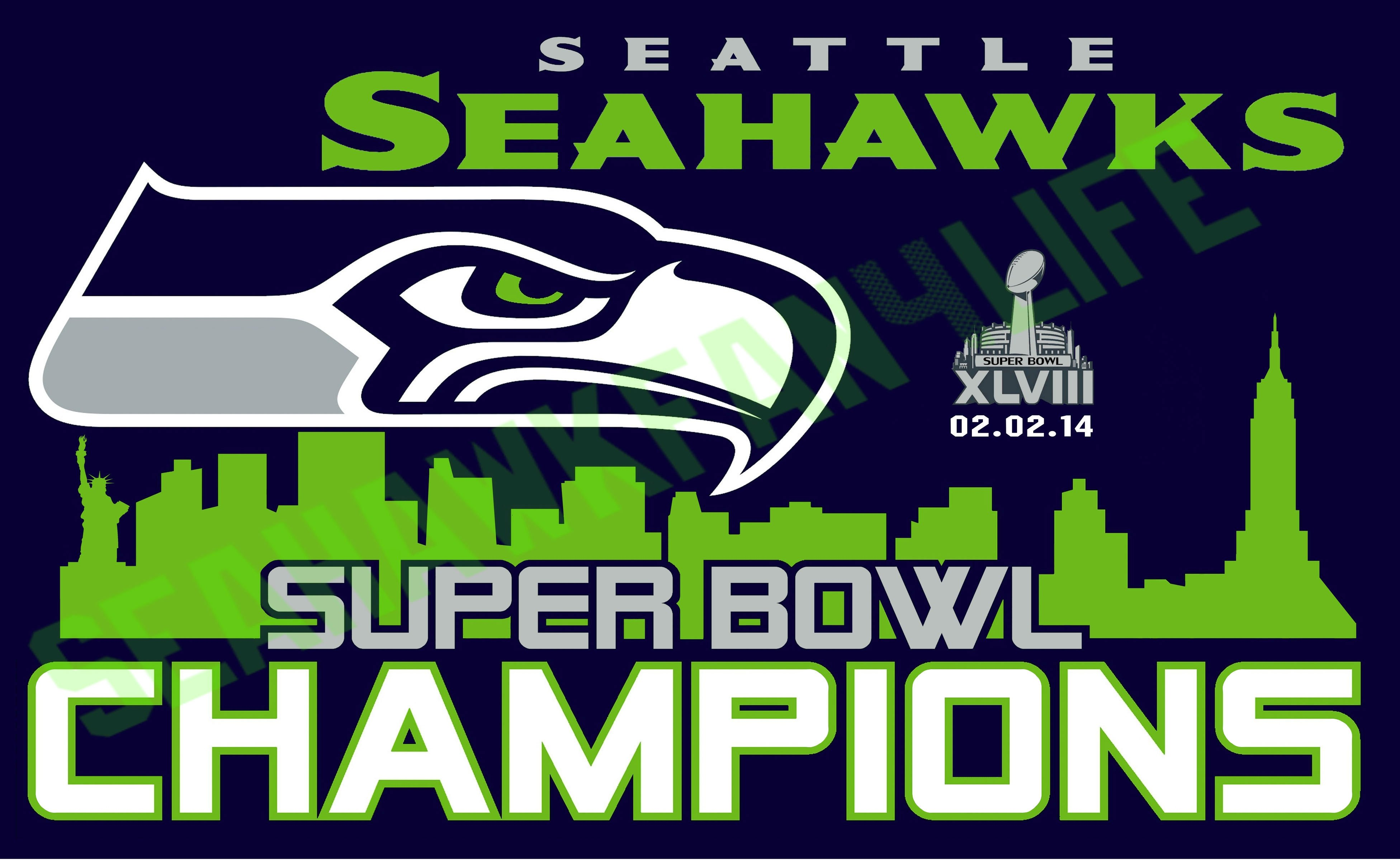 Seattle seahawks nfl football wallpaper | 3904x2400