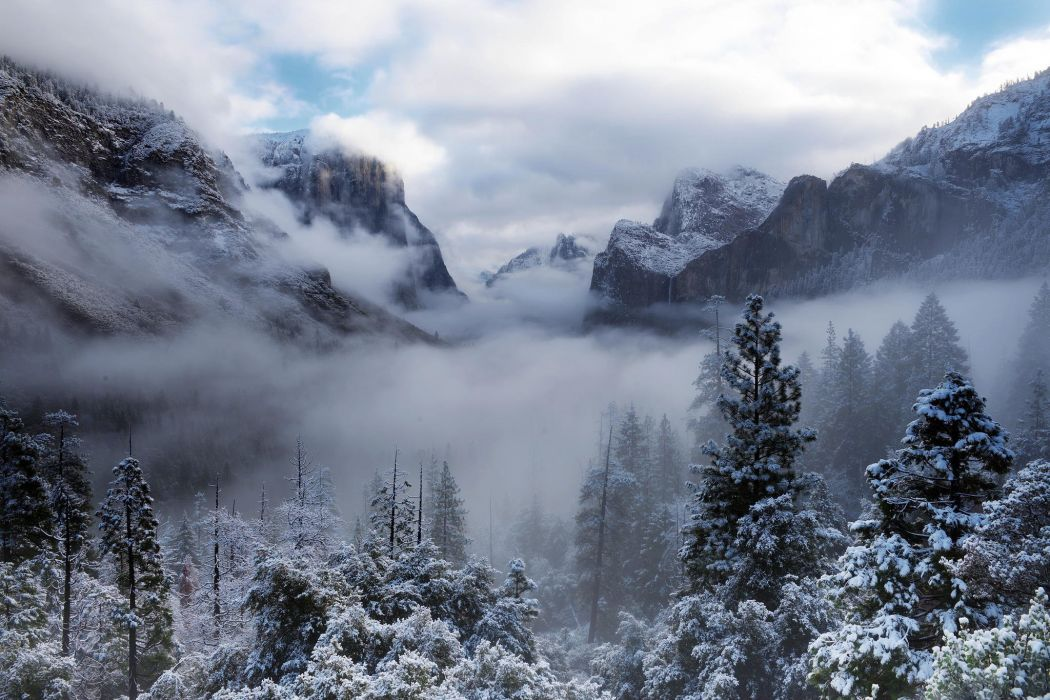 yosemite national park usa california winter snow forest wallpaper