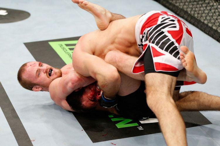 UFC mma fighting martial arts mixed (2) wallpaper