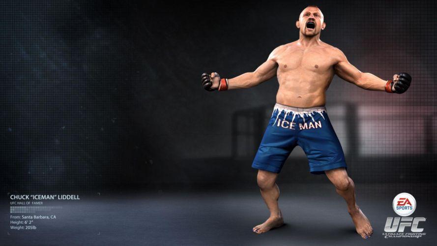 UFC mma fighting martial arts mixed (5) wallpaper