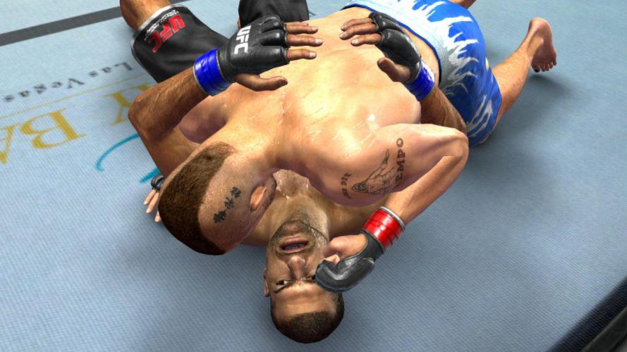 UFC mma mixed martial arts fighting (27) wallpaper