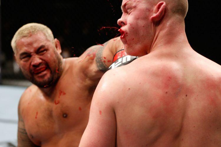 UFC mma mixed martial arts fighting (32) wallpaper