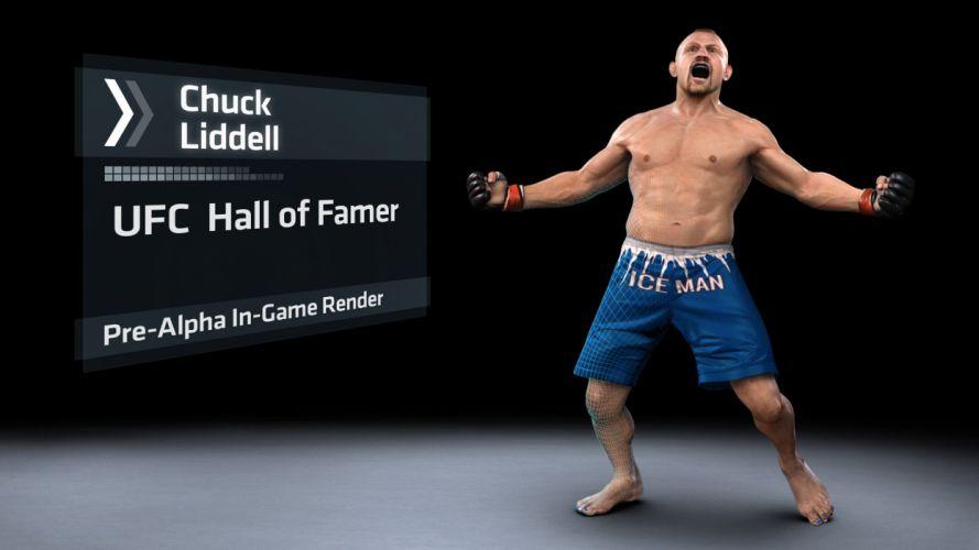 UFC mma mixed martial arts fighting (48) wallpaper