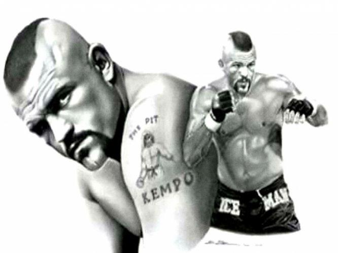 UFC mma mixed martial arts fighting (50) wallpaper