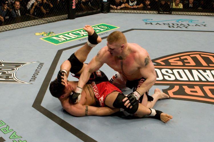 UFC brock lesner mma martial fighting (7) wallpaper