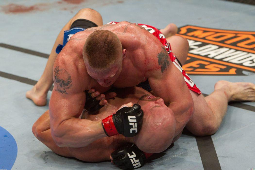 UFC brock lesner mma martial fighting (5) wallpaper