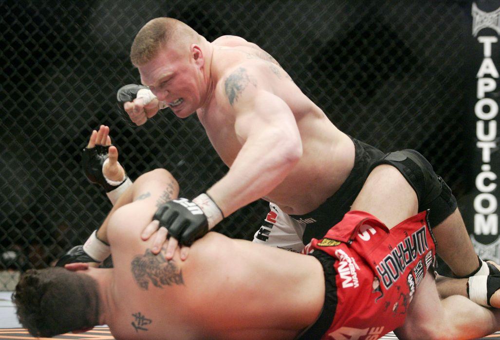 UFC brock lesner mma martial fighting (14) wallpaper