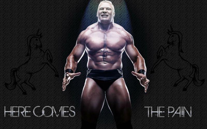 WWE brock lesner wrestling fighting (9) wallpaper