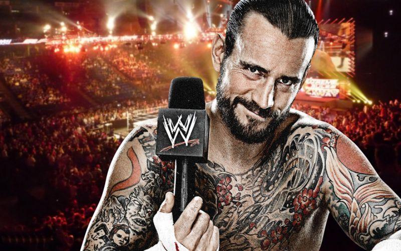 WWE wrestling fighting rq wallpaper