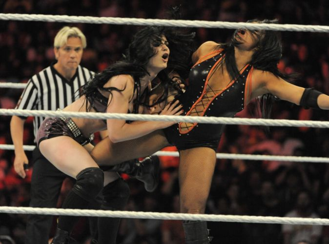 WWE wrestling fighting divas sexy babe ds wallpaper