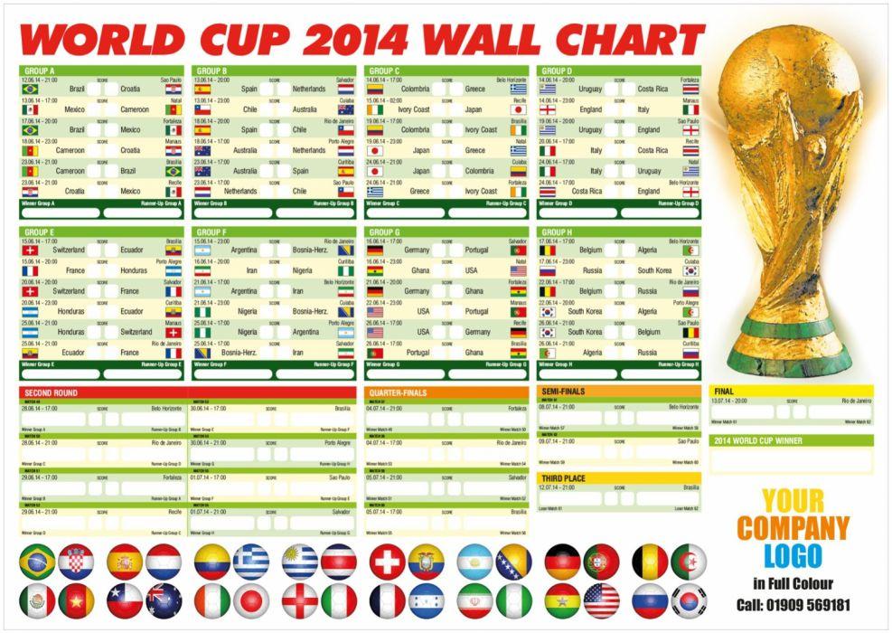 FIFA World Cup soccer (26) wallpaper