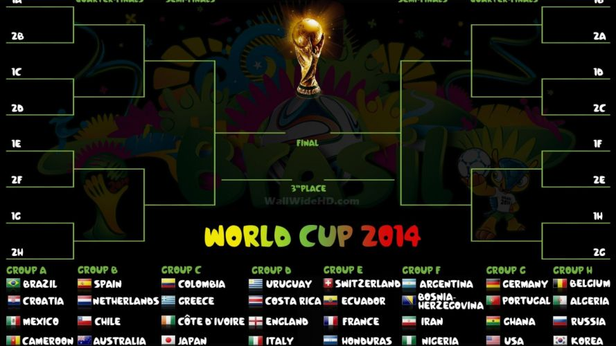 FIFA World Cup soccer (29) wallpaper