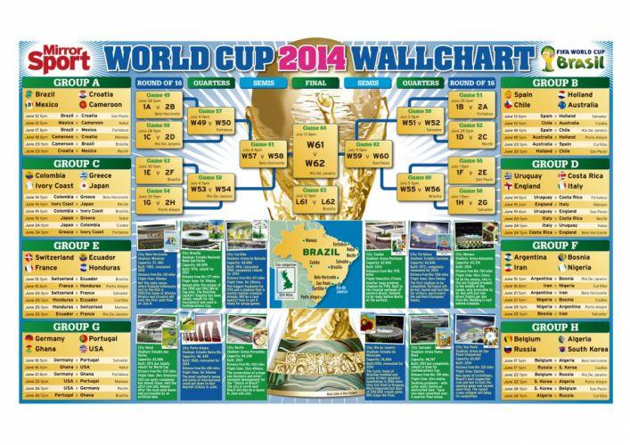 FIFA World Cup soccer (33) wallpaper