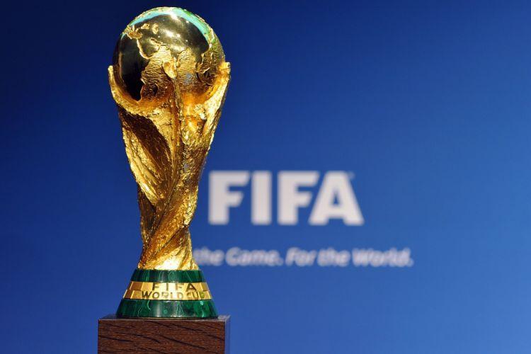 FIFA World Cup soccer (35) wallpaper