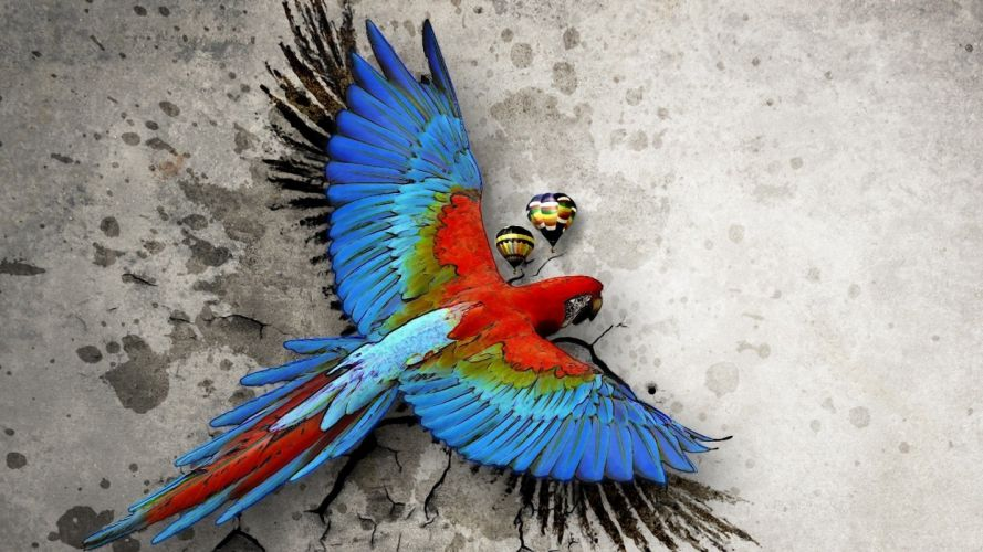 macaw parrot bird tropical psychedelic artwork art wallpaper