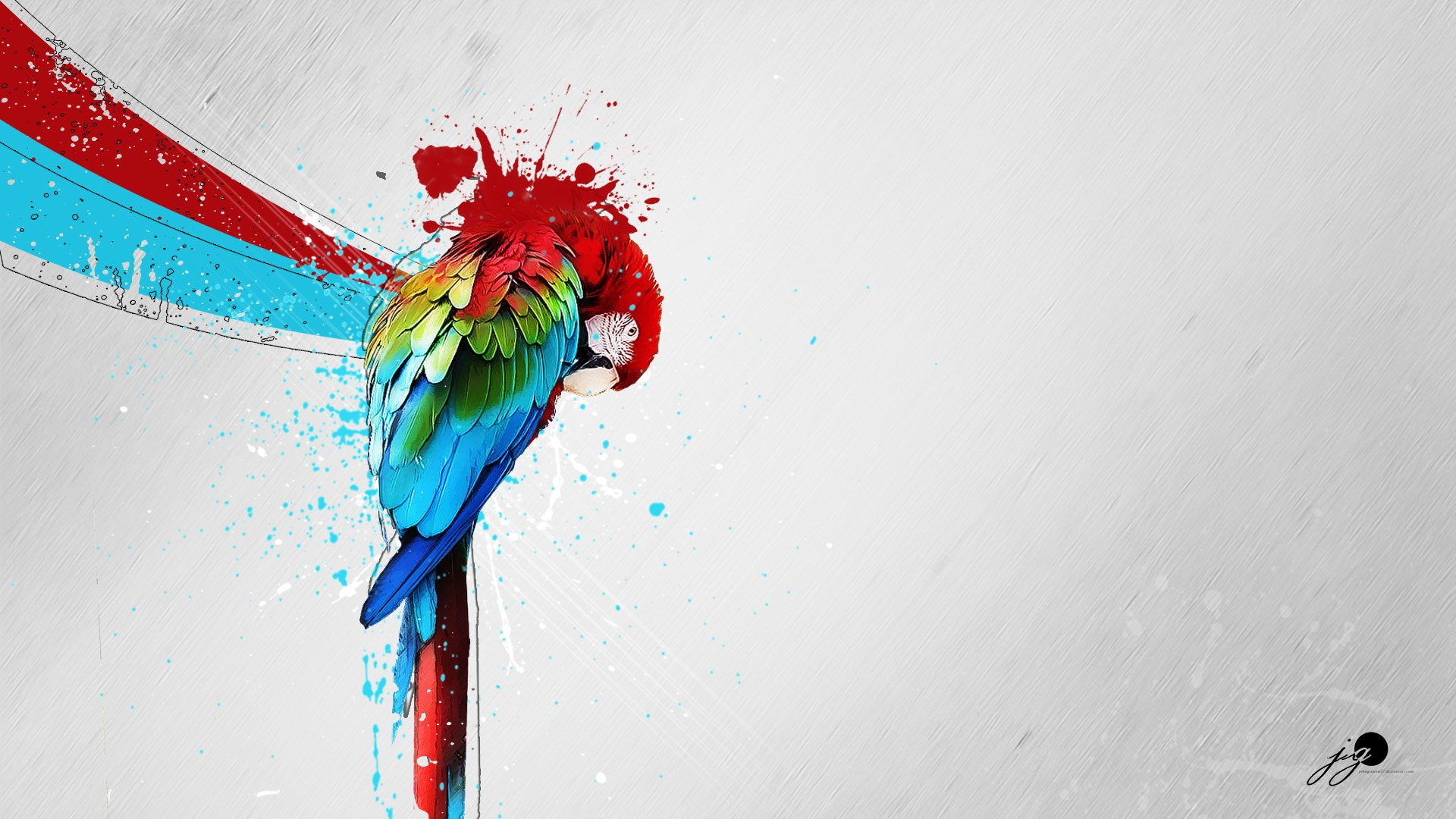 Abstract Colors Flashy Bird 4k: Macaw Parrot Bird Tropical Psychedelic Artwork Art
