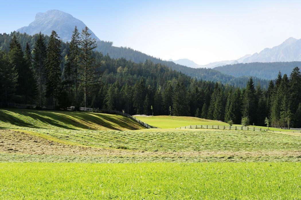 Austria Seefeld field mountains forest wallpaper