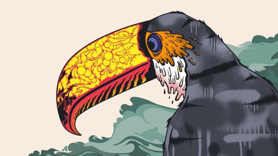 TOUCAN parrot bird tropical (41) wallpaper