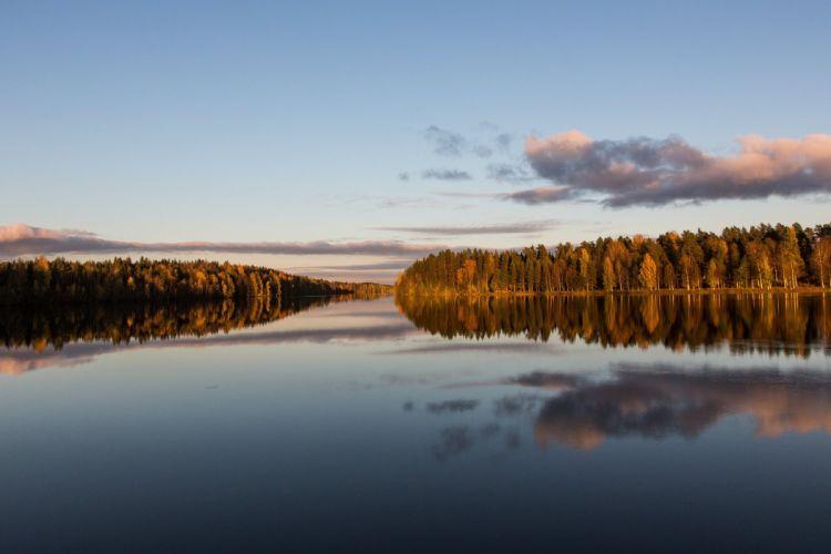 forest river calm evening autumn wallpaper