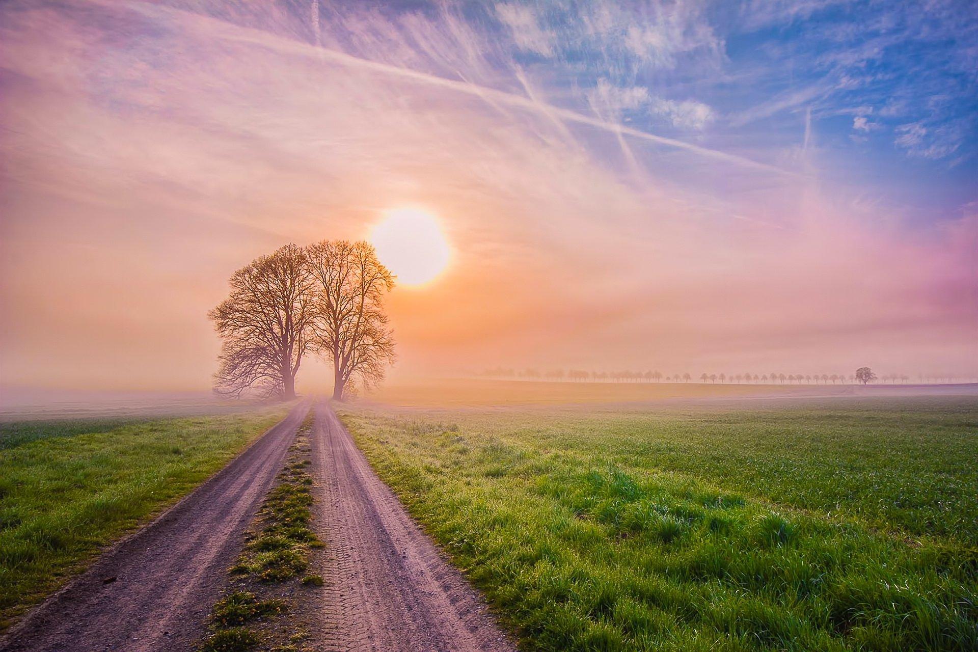 дорога, солнце, трава, деревья  № 3117701 загрузить