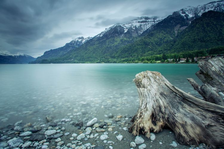 forest switzerland lake mountains wallpaper