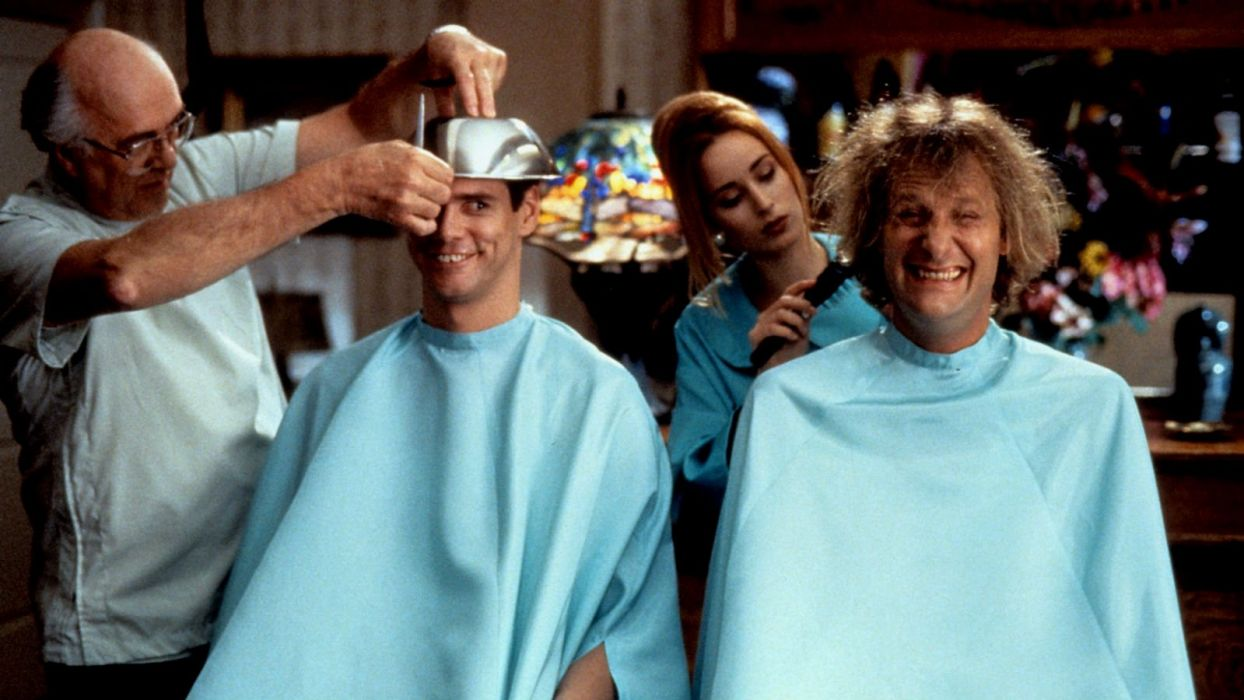 DUMB AND DUMBER comedy family humor funny (17) wallpaper