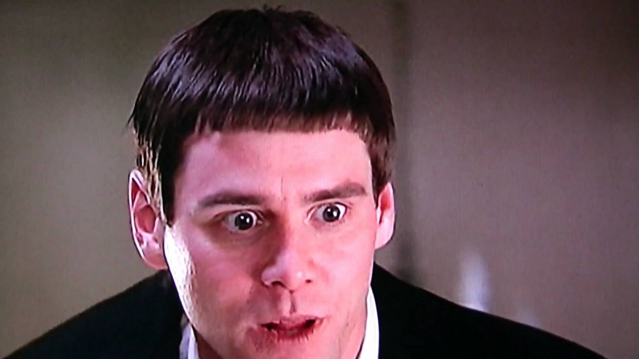 DUMB AND DUMBER comedy family humor funny (39) wallpaper