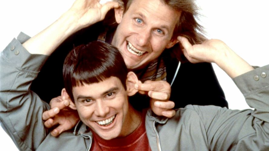 DUMB AND DUMBER comedy family humor funny (43) wallpaper