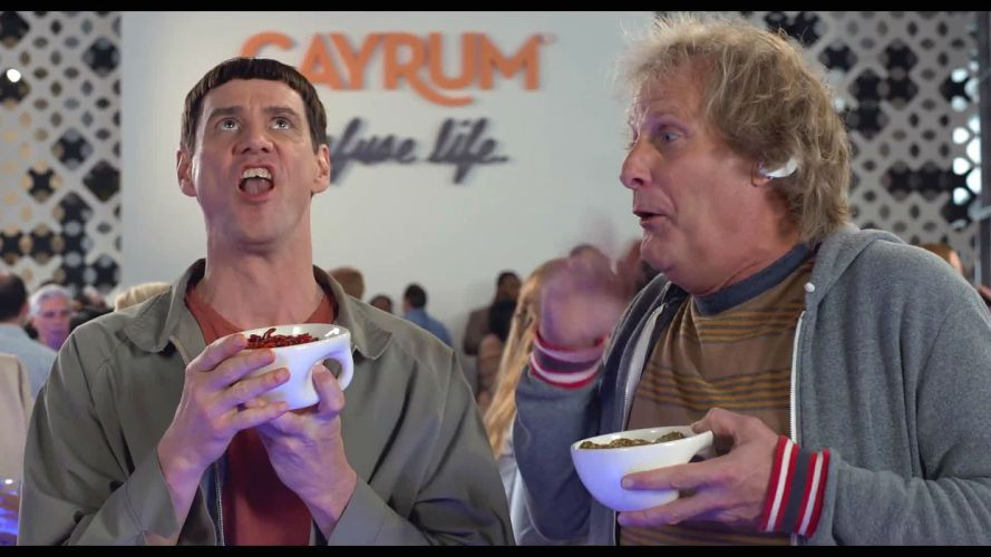 DUMB AND DUMBER comedy family humor funny (61) wallpaper