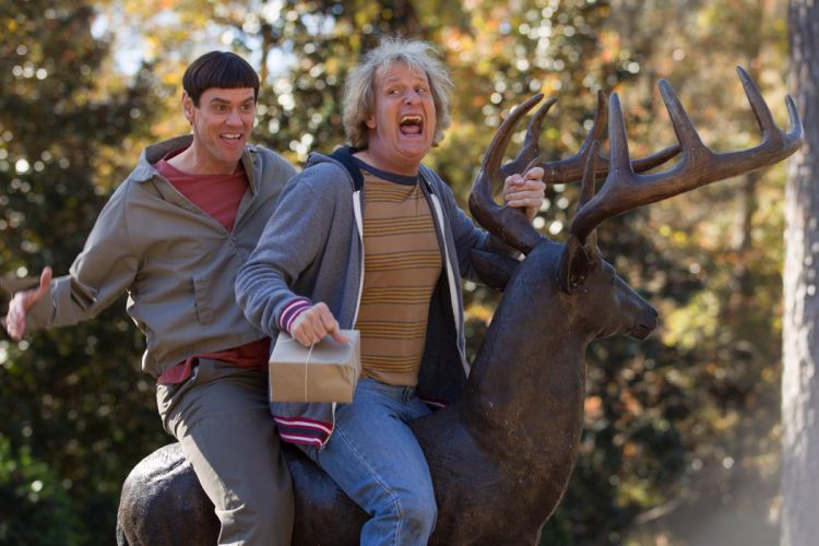 DUMB AND DUMBER comedy family humor funny (60) wallpaper