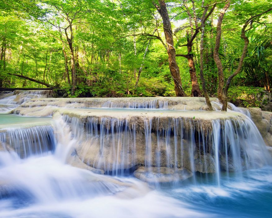 Waterfall Forest Trees Nature wallpaper