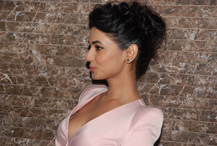 SONAL CHAUHAN bollywood actress model babe (27) wallpaper