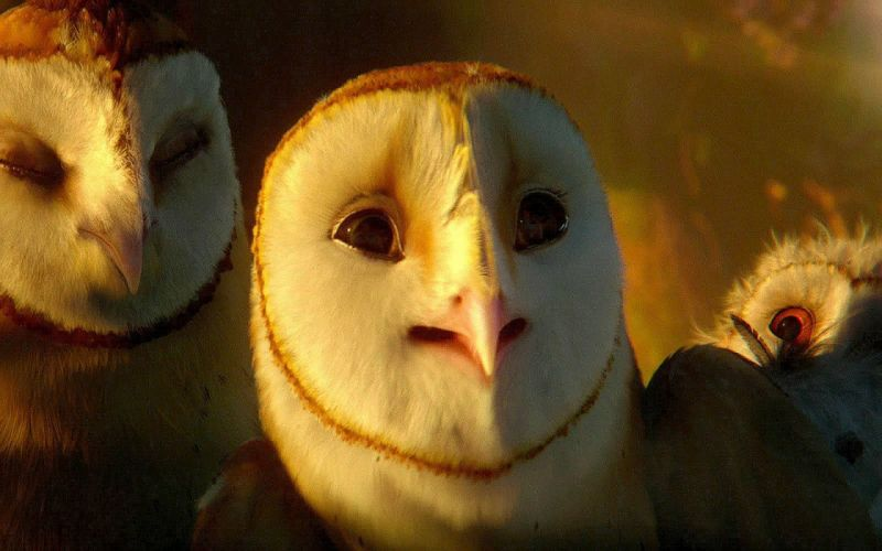 LEGENDS GUARDIANS OWLS GAHOOLE animation fantasy adventure family cartoon hoole owl (10) wallpaper