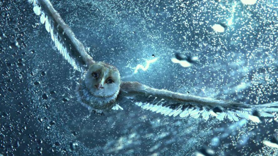 LEGENDS GUARDIANS OWLS GAHOOLE animation fantasy adventure family cartoon hoole owl (12) wallpaper